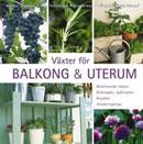 vaxter-for-balkong-uterum-blommande-vaxter-gronsaker-sydfrukter-kryddor-inredningstips